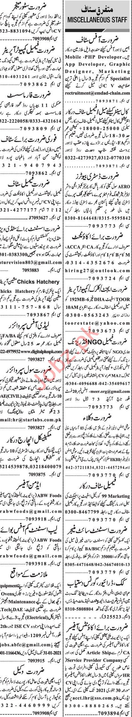 Jang Sunday Classified Ads 24 Jan 2021 for Management Staff