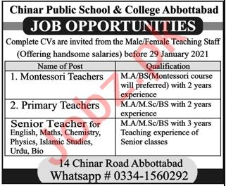 Chinar Public School & College Abbottabad Jobs 2021