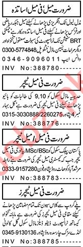 Coordinator & Teaching Staff Jobs 2021 in Peshawar