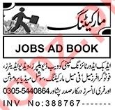 Web Developer & Video Editor Jobs 2021 in Peshawar