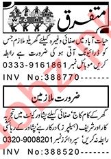 Cook & Kitchen Helper Jobs 2021 in Peshawar