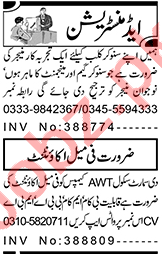 Female Accountant & Marketing Manager Jobs 2021