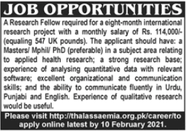 Research Fellow Jobs in Private Company