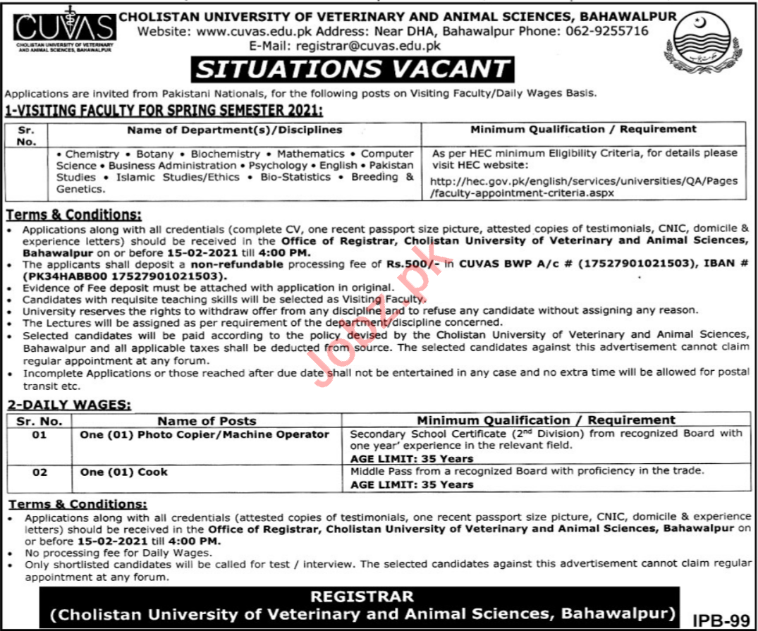 Cholistan University of Veterinary & Animal Sciences Jobs