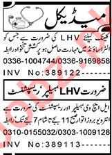 Lady Health Visitor & Receptionist Jobs 2021 in Peshawar