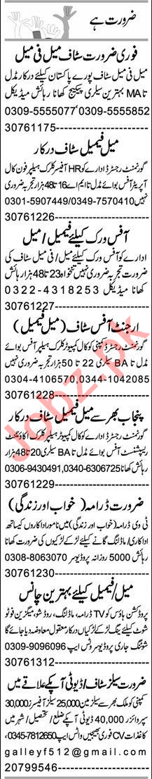 Assistant Manager & Branch Manager Jobs 2021 in Faisalabad