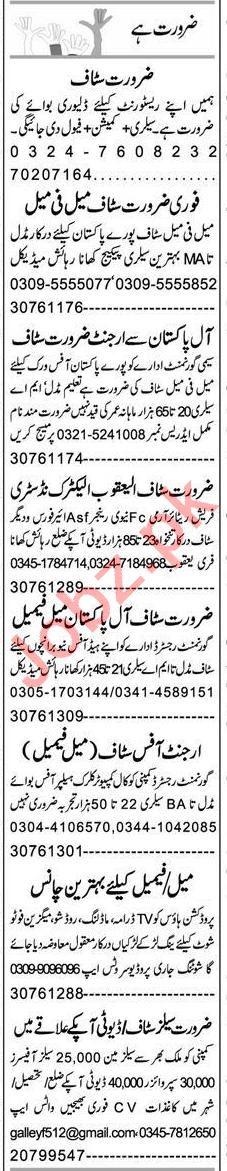 Express Sunday Faisalabad Classified Ads 7th Feb 2021