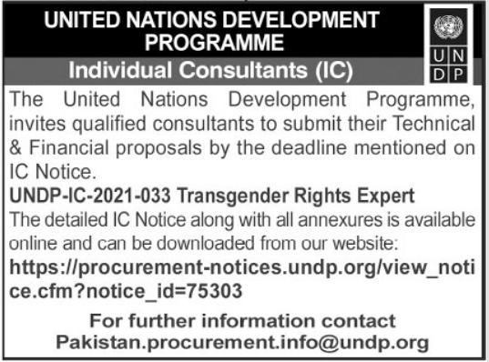UNDP Individual Consultant Jobs 2021