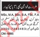 Nawaiwaqt Sunday Classified Ads 14th Feb 2021 for Teaching