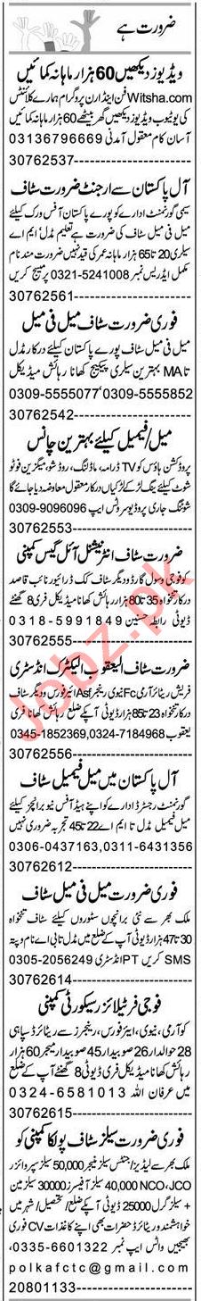 Data Entry Operator & Web Developer Jobs 2021 in Peshawar