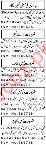 Principal & Teachers Jobs 2021 in Peshawar