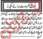 Coordinator & Subject Teacher Jobs 2021 in Multan