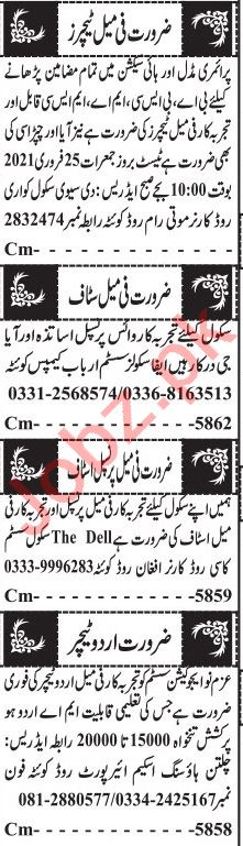 Jang Sunday Classified Ads 21st Feb 2021 for Educational