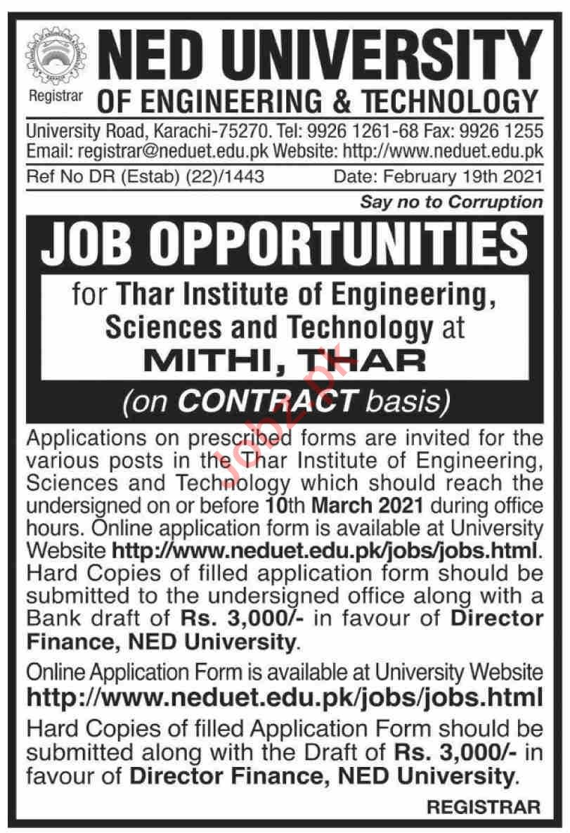 Thar Institute of Engineering Sciences & Technology Jobs