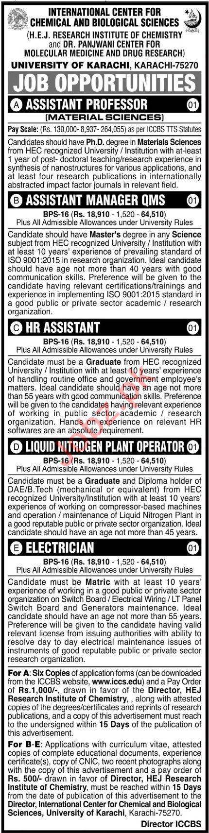 HEJ Research Institute of Chemistry Karachi Jobs 2021