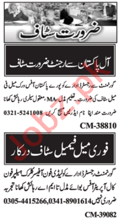 Telephone Operator & Call Operator Jobs 2021 in Islamabad