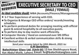 Balochistan Glass Limited Job 2021 For Executive Secretary