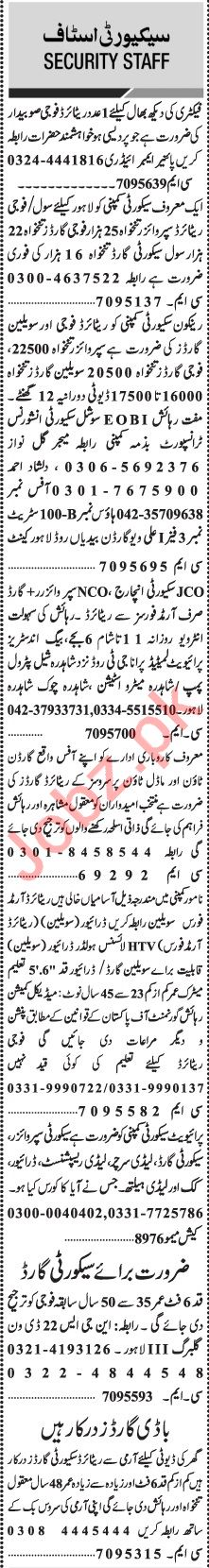 Jang Sunday Classified Ads 28 Feb 2021 for Security Staff