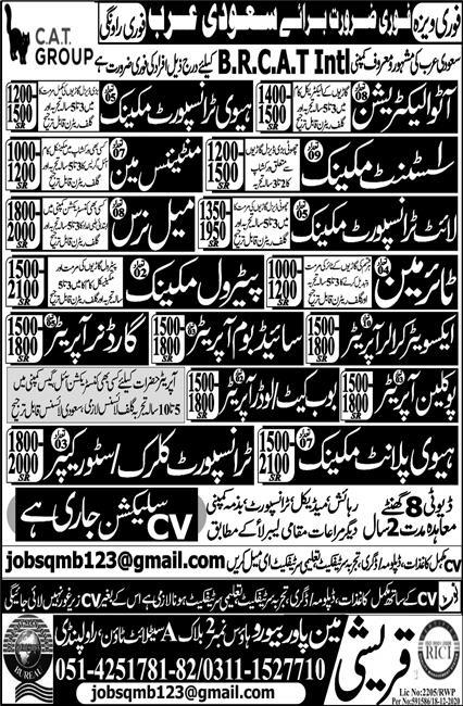 BR CAT International Company Limited Jobs 2021