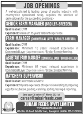 Zubair Feeds Private Limited Rawalpindi Jobs