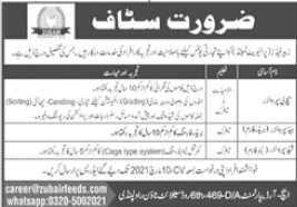 Zubair Feeds Private Limited Jobs