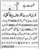 Sales Staff Jobs in Polka Company
