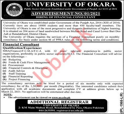 University of Okara Jobs 2021 for Financial Consultant