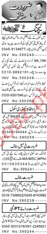 Principal & Section Head Jobs 2021 in Peshawar