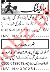 Cashier & Branch Manager Jobs 2021 in Peshawar