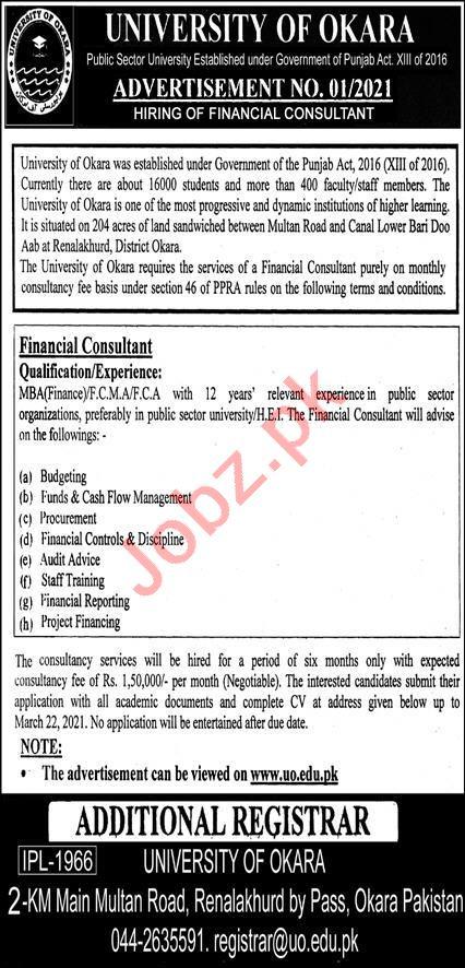 Financial Consultant Jobs 2021 in University of Okara