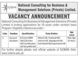 National Consulting for Business & Management Solutions Jobs