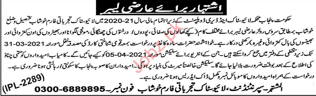 Livestock Experiment Station Khushab Jobs 2021 for Labor