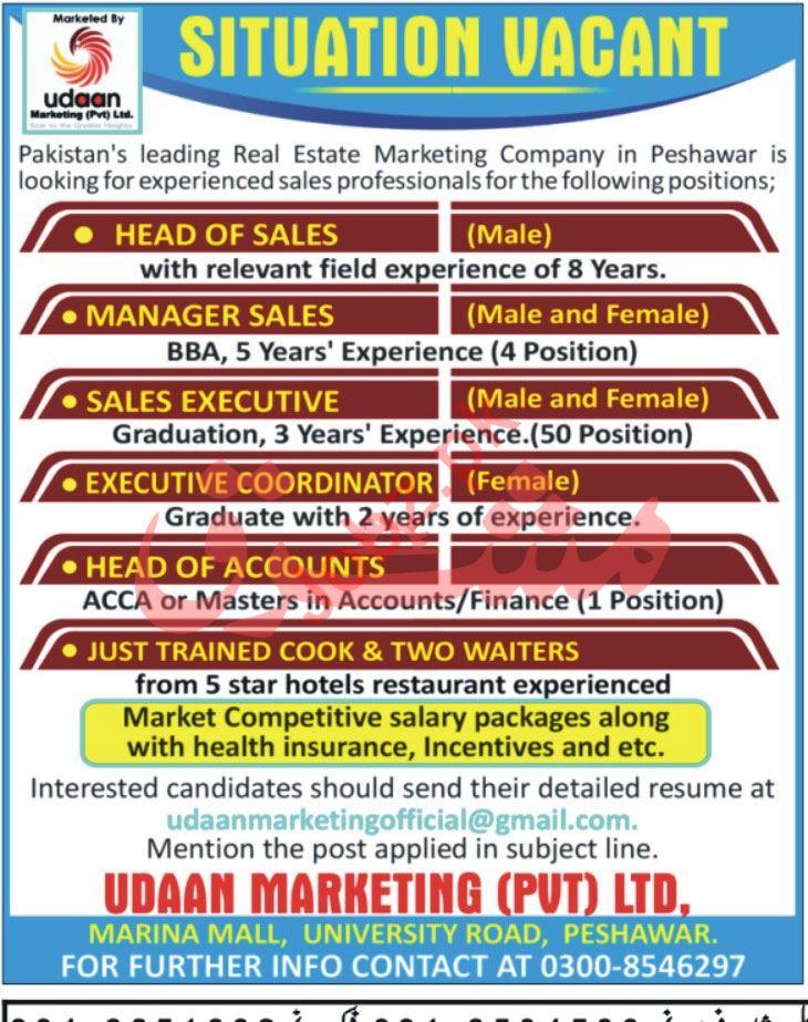 Udaan Marketing Peshawar Jobs Executive Coordinator & Cook