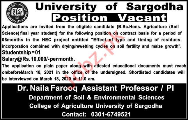 University of Sargodha UOS Jobs 2021 for Studentship