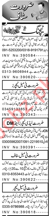 Coordinator & Teaching Assistant Jobs 2021 in Peshawar