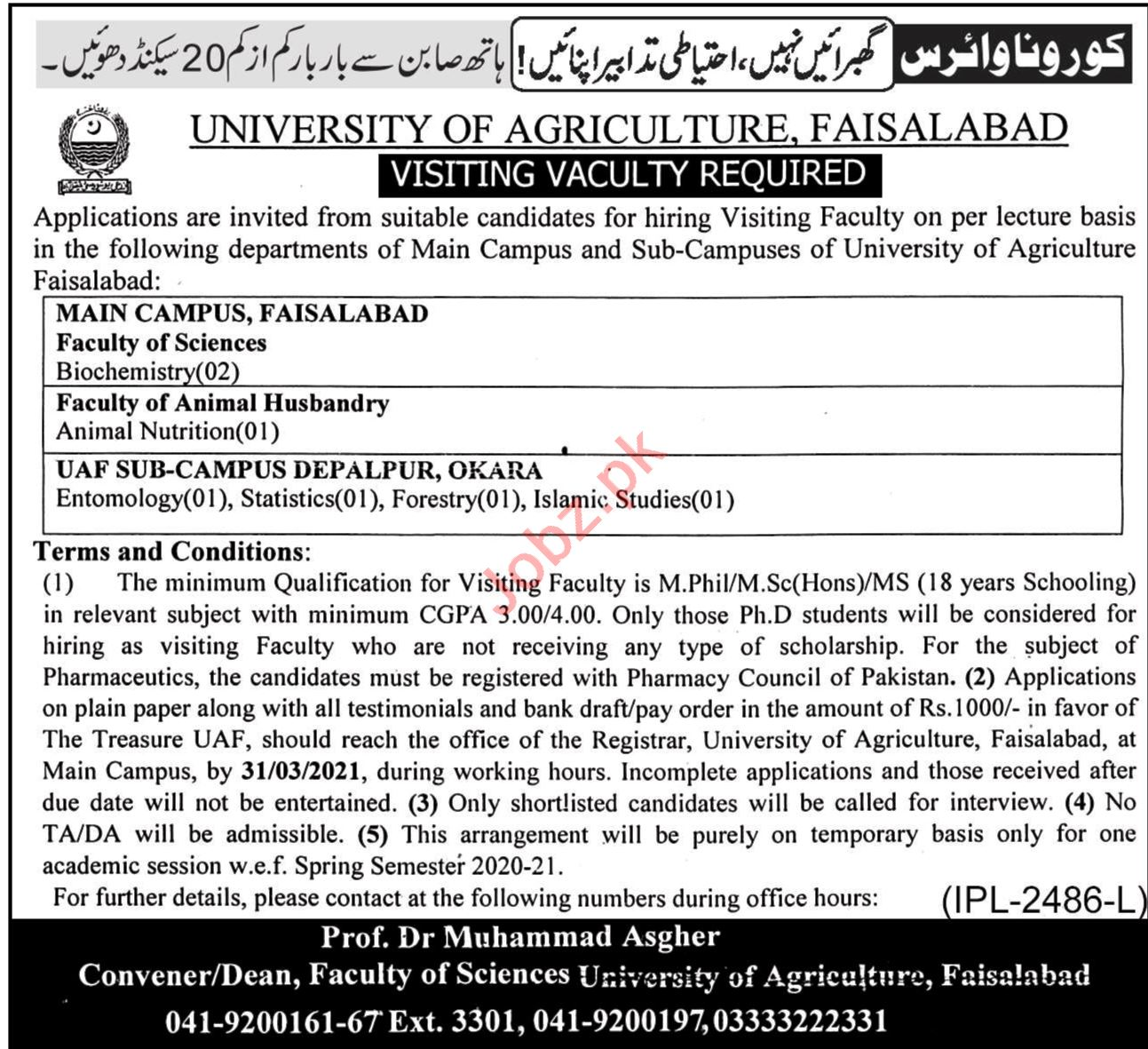 University of Agriculture UAF Faisalabad Faculty Jobs 2021