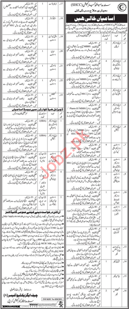 Deputy Director Jobs in Sindh Health Care Commission SHCC