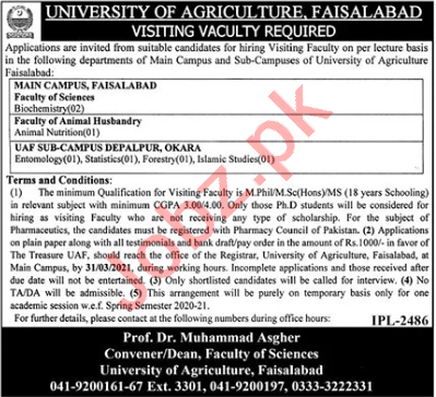 University of Agriculture UAF Faisalabad Jobs for Professors