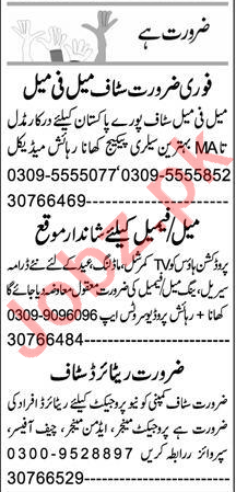Account Manager & Sales Manager Jobs 2021 in Peshawar