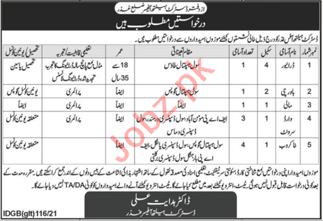 District Health Officer DHO Ghizer Jobs 2021 for Drivers