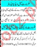 Video Editor & Marketing Officer Jobs 2021 in Peshawar