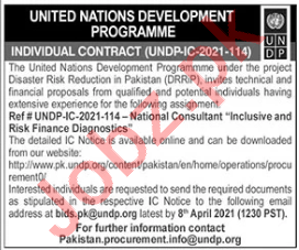 UNDP Jobs 2021 for Risk Finance Diagnostics Consultant