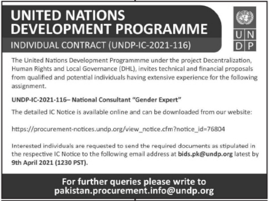 United Nations Development Programme UNDP NGO Job 2021