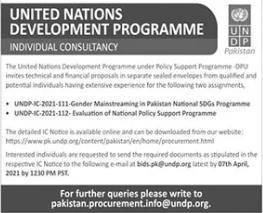 United Nation Development Programme UNDP Job 2021