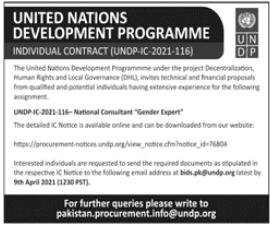 United Nations Development Programme UNDP Job 2021