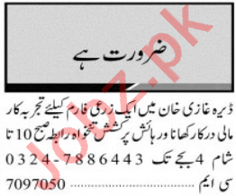 Jang Sunday Classified Ads 28th March 2021 for Multiple