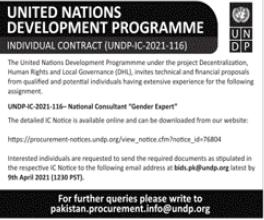 United Nations Development Programme UNDP Jobs 2021