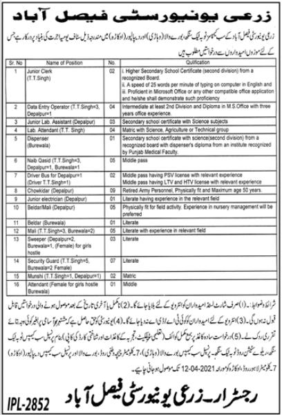 Agriculture University Faisalabad Jobs 2021