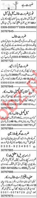 Graphic Designer & PHP Developer Jobs 2021 in Lahore