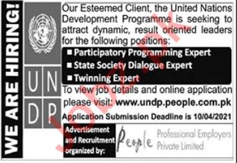 UNDP Jobs 2021 for Twinning Expert & Dialogue Expert